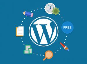WordPress için gerekli 5 eklenti